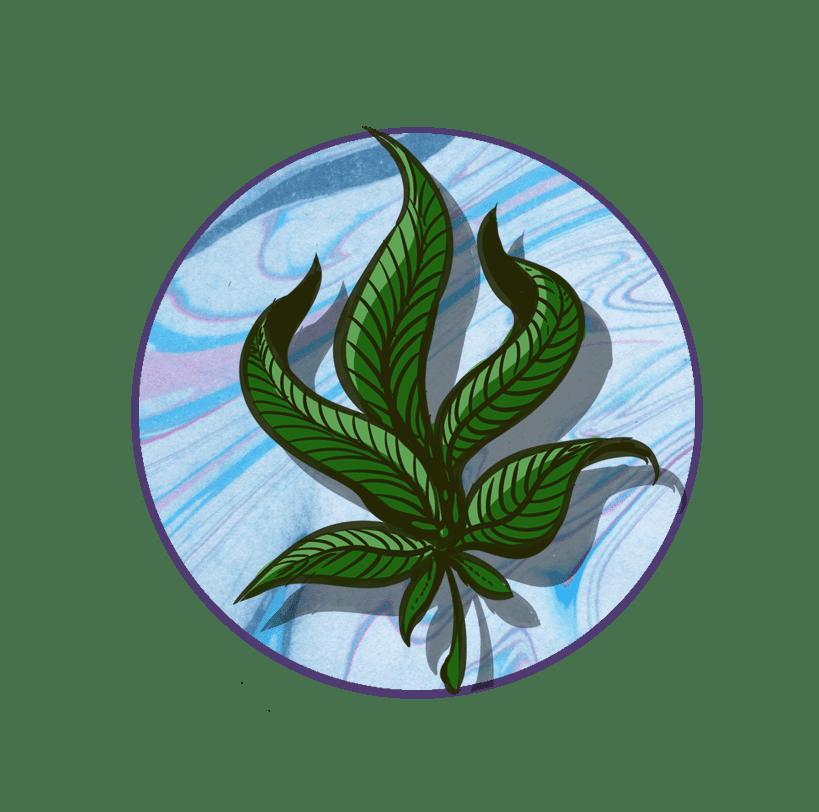 flower-icon-local-colorado-cannabis